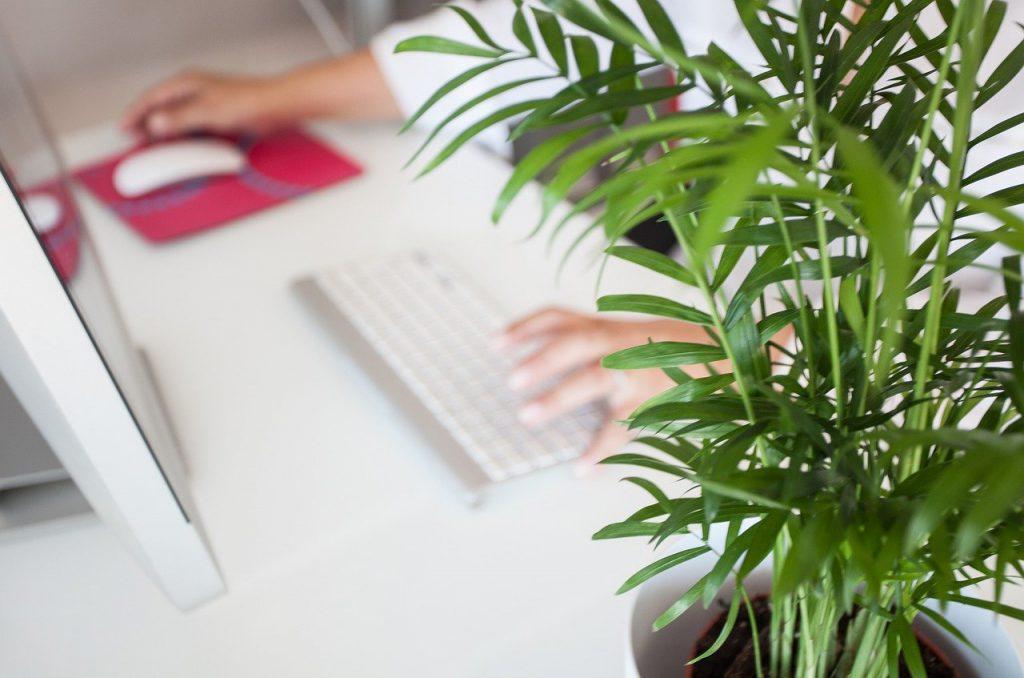 espacios de trabajo sostenibles